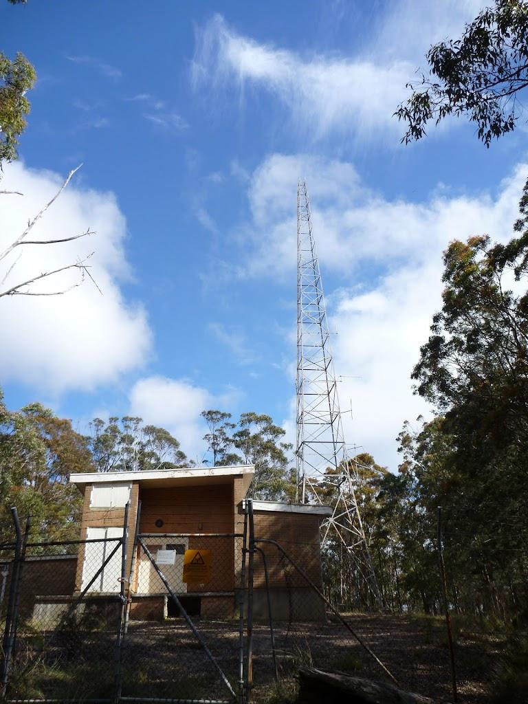 Congewai Communications Tower, Watagan State Forest