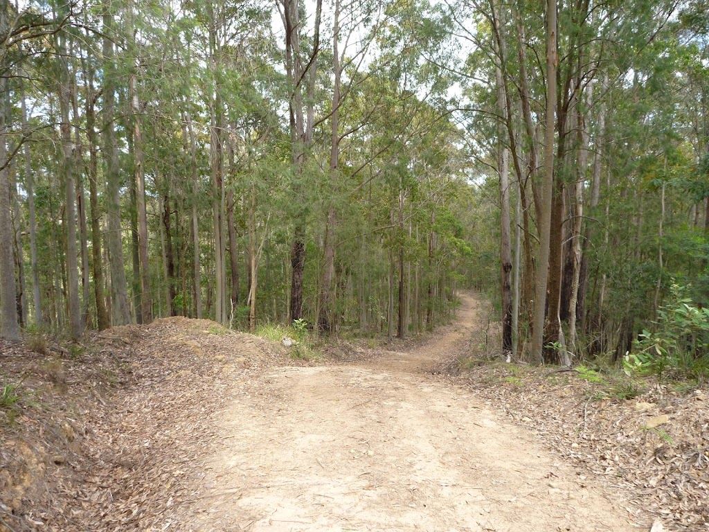 Langans Rd, Watagan State Forest