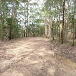 Langans Rd Watagan State Forest (363212)