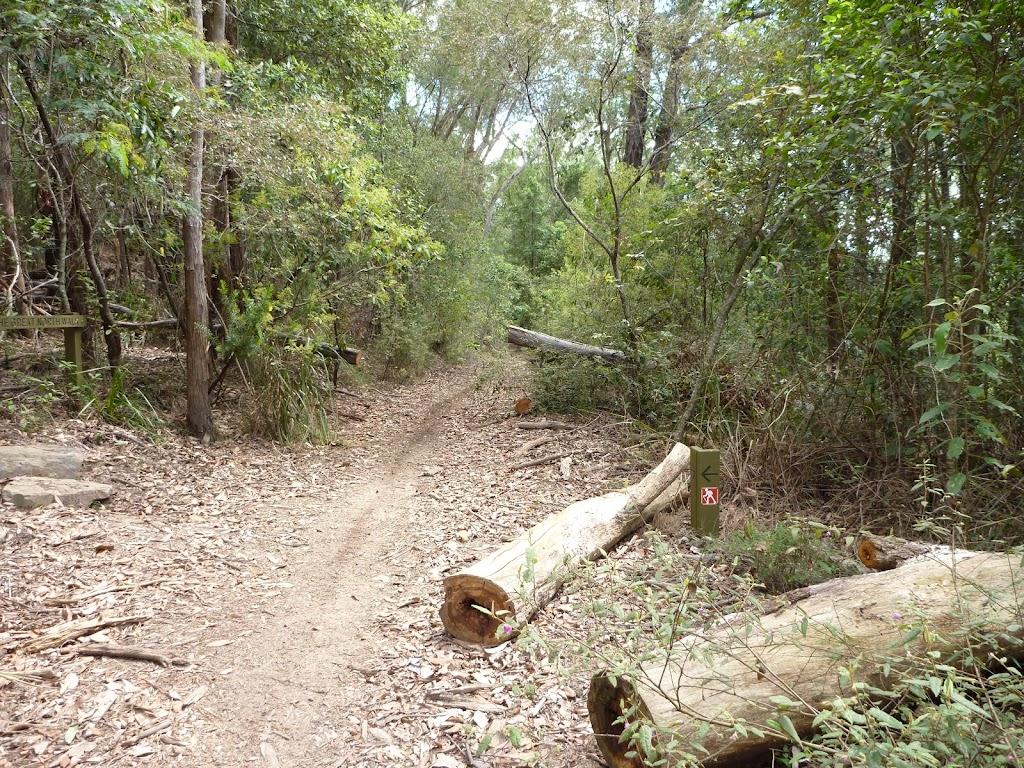 GNW meets the Bar Trail