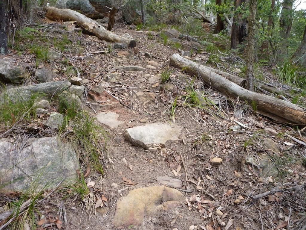 Rocky track, Olney State Forest