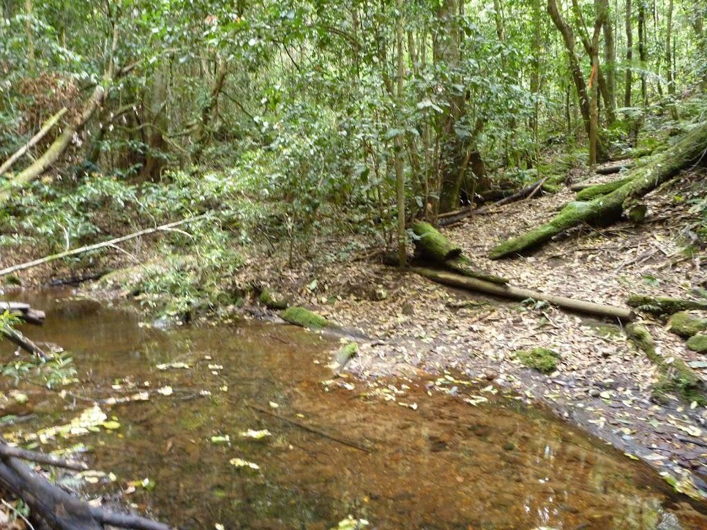 Crossing Wollombi Brook