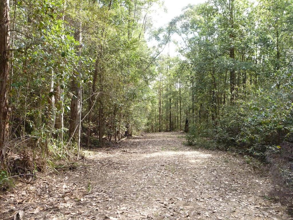 Wild Boar Road