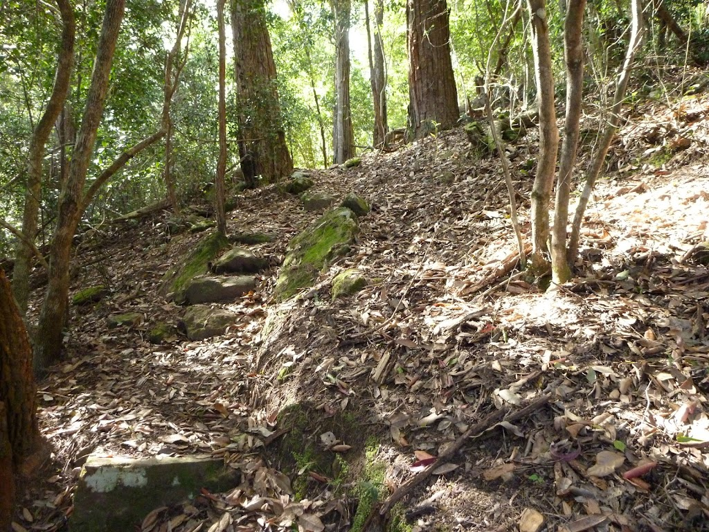 Steep track, north of Wollombi Brook Pool