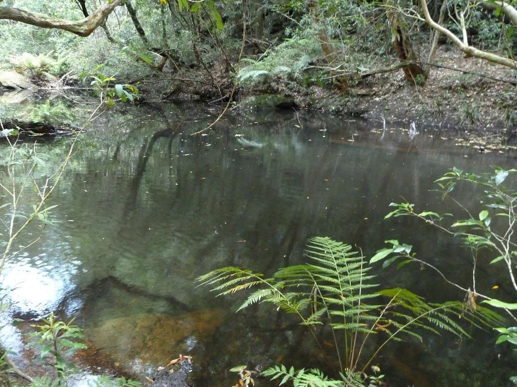 Wollombi Brook Pool