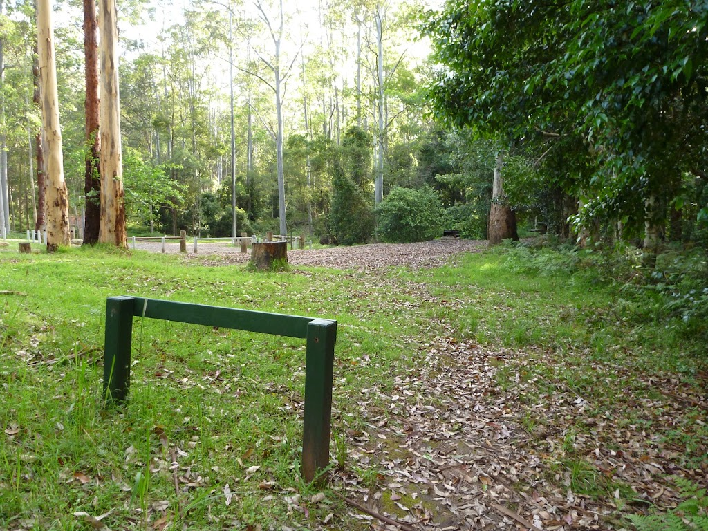 Basin campsite in the Watagans