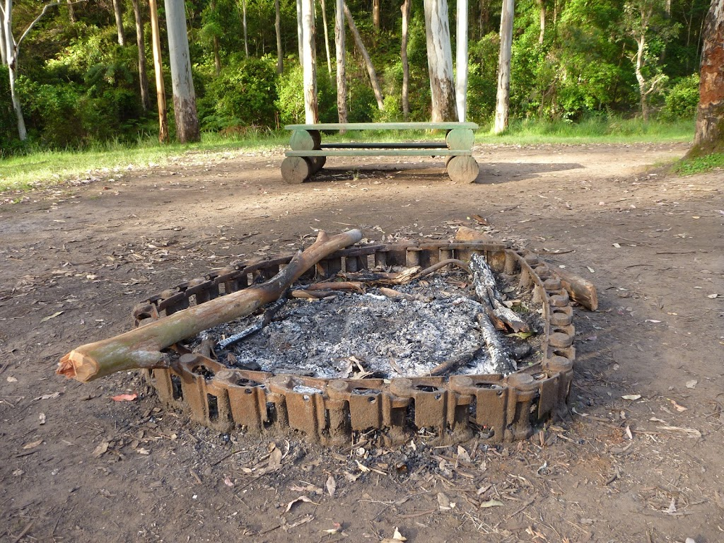 Fire scar at the Basin campsite