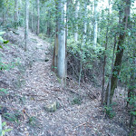 Hairpin bends east of Wollombi Brook (365141)