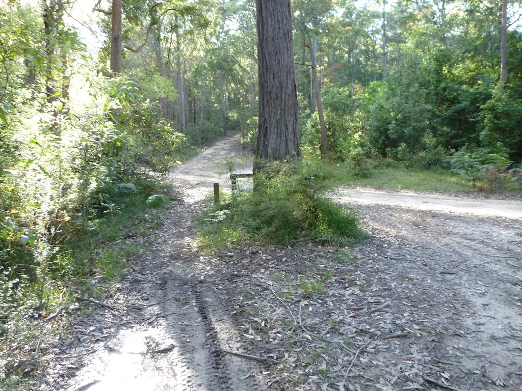 An unsealed trail meets Walkers Ridge Road