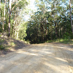 Along the ridge Walkers Ridge Road (365288)