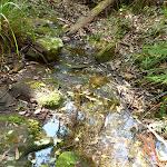 Cooler creek crossing south of Kingtree Ridge Fire Road (365543)