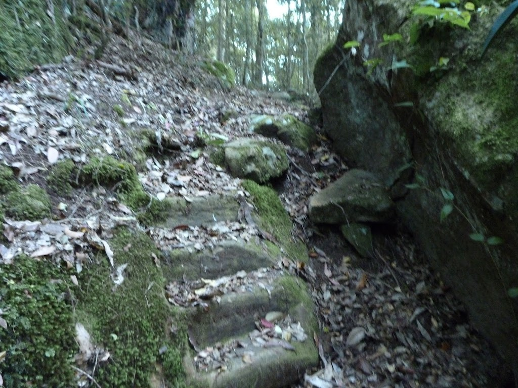 Stone steps east of Wollombi Brook