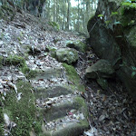 Stone steps east of Wollombi Brook (366122)