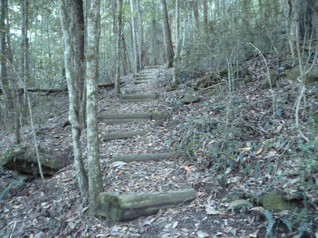 Timber steps east of Wollombi Brook