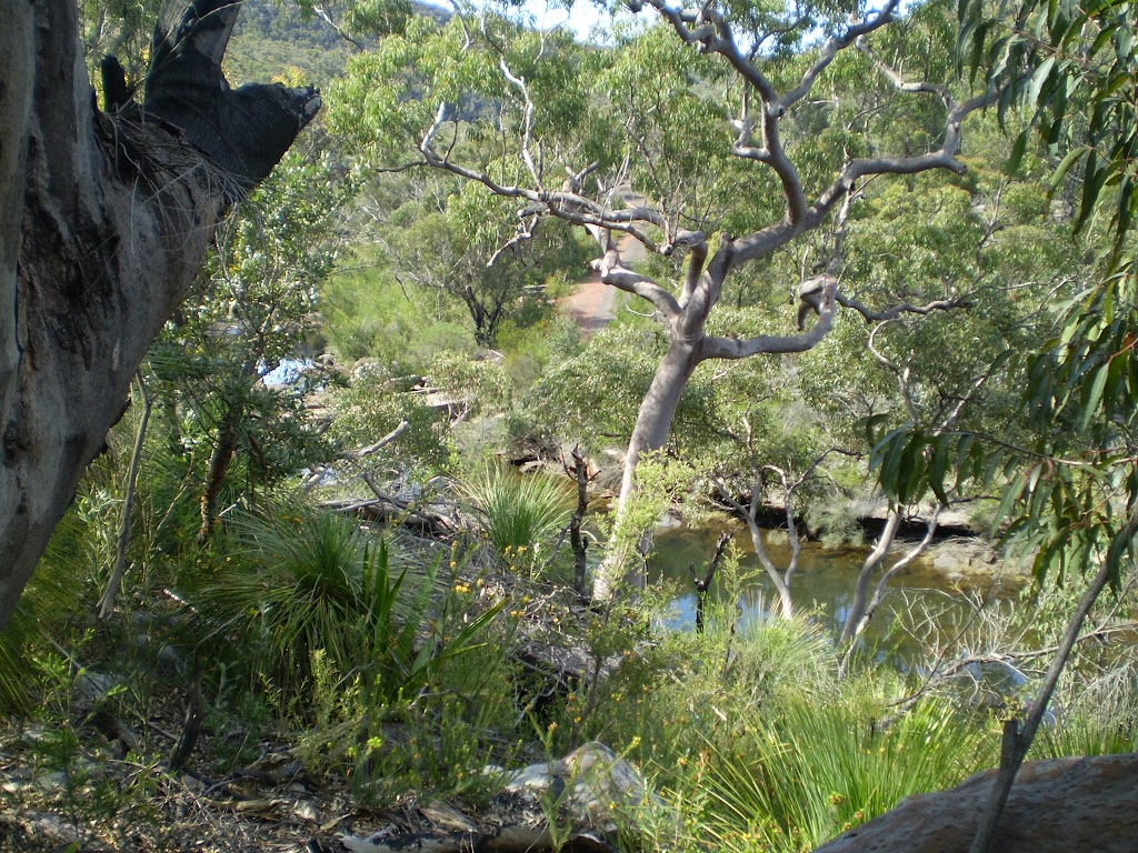 views of Heathcote Creek from the track