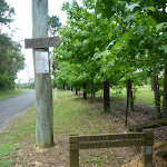Signposts at the intersection of Forest and Tooheys Rds  (368018)