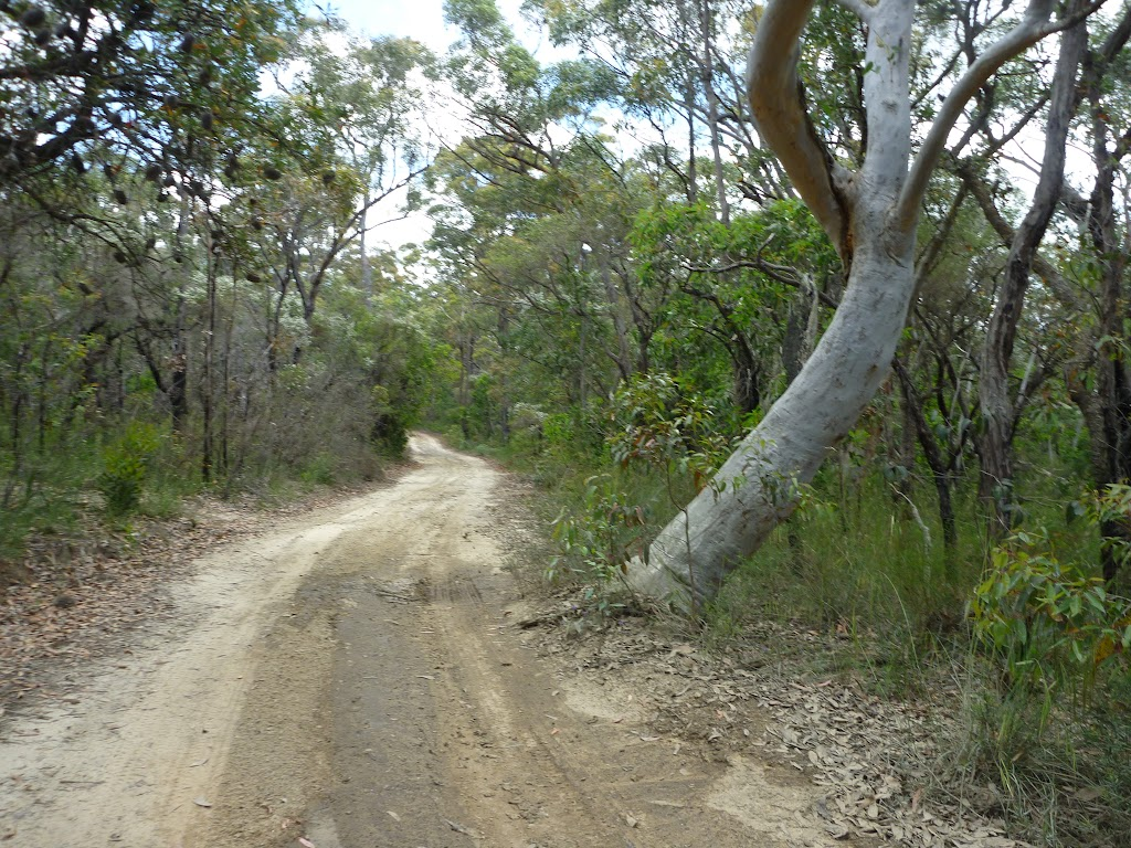 Tooheys Road near the Archery range (368147)