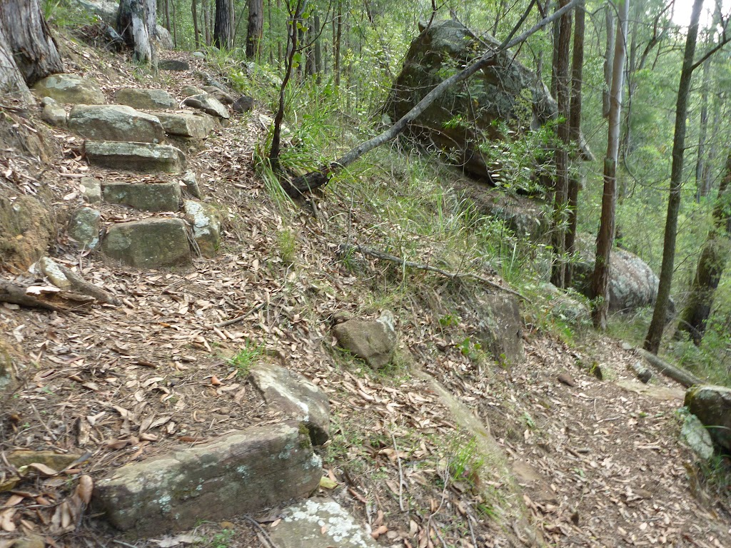 Rock steps in Palm Grove NR