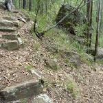 Rock steps in Palm Grove NR