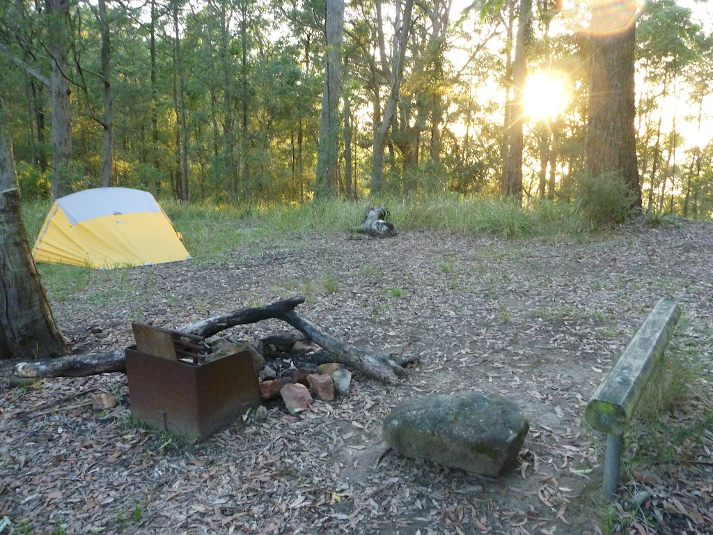 Sunrise at the campsite in Palm Grove NR