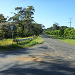 Intersection of Wisemans Ferry and Dog Trap Roads