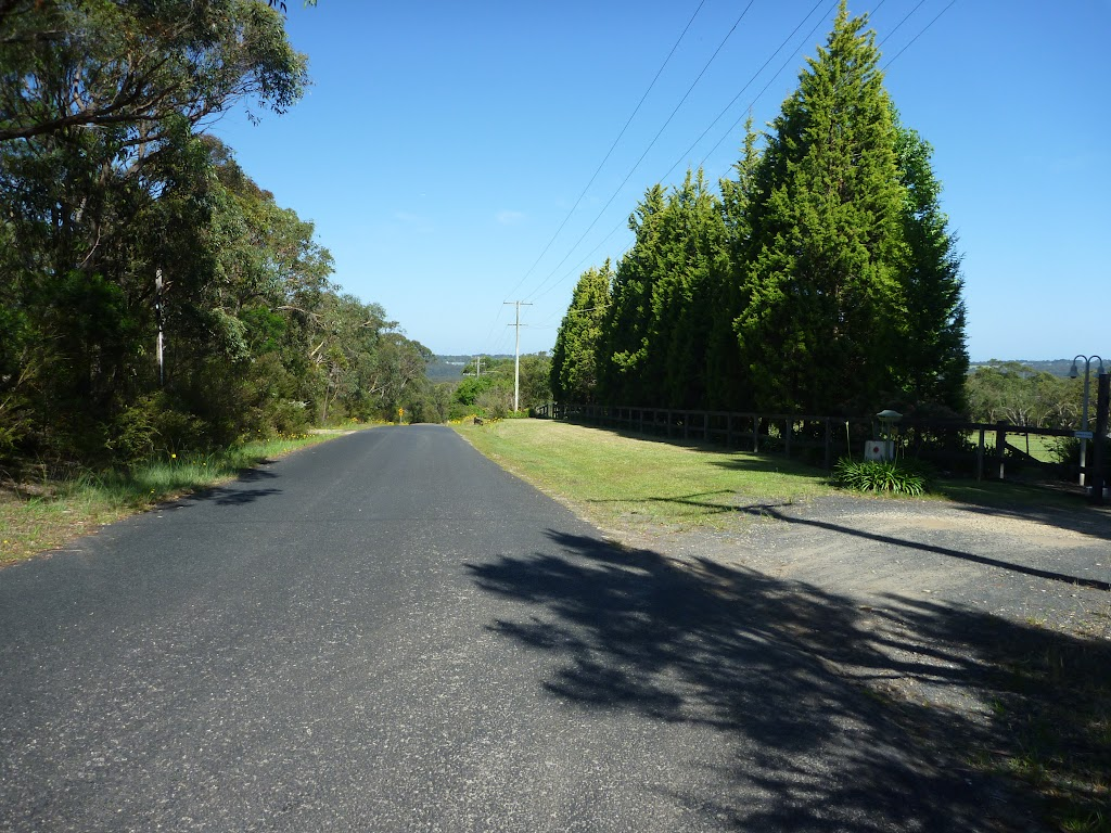 Walking along Silvesters Rd (371008)