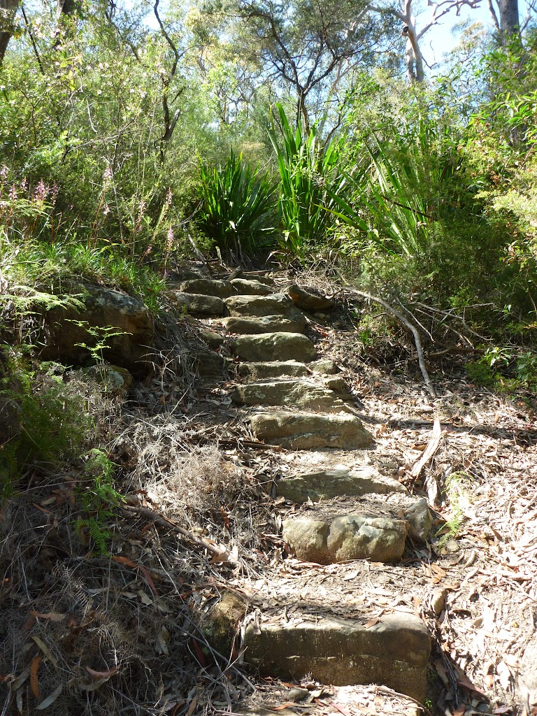 Steps south of Robinson Creek