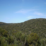 The ridges of Heathcote National Park (37170)