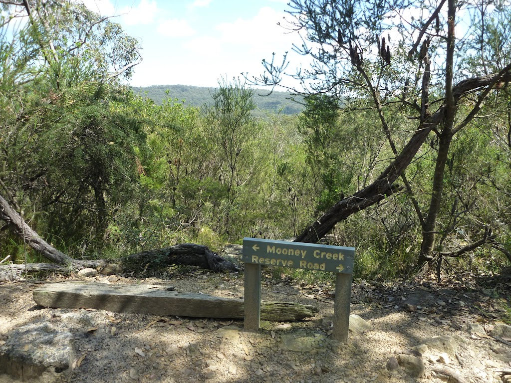 Clear view from the old Somersby Falls track intersection