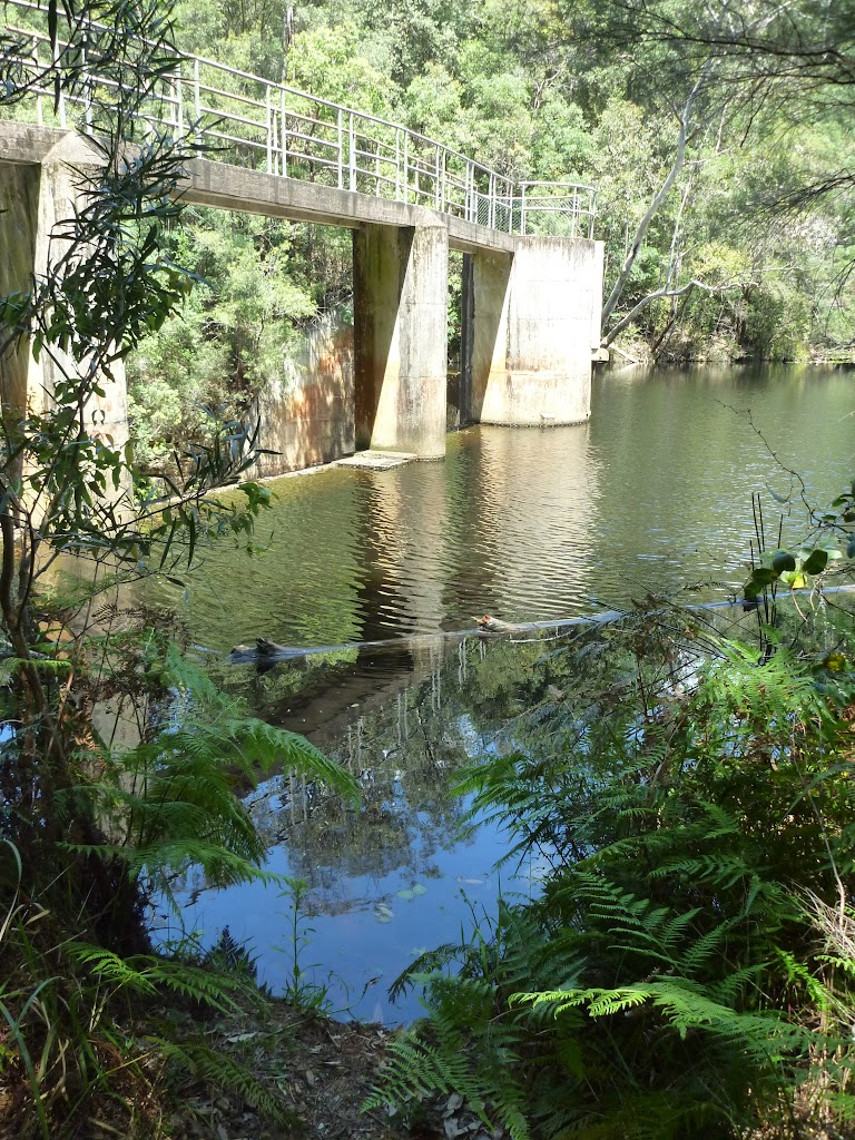 Lower Mooney Mooney Dam (372664)