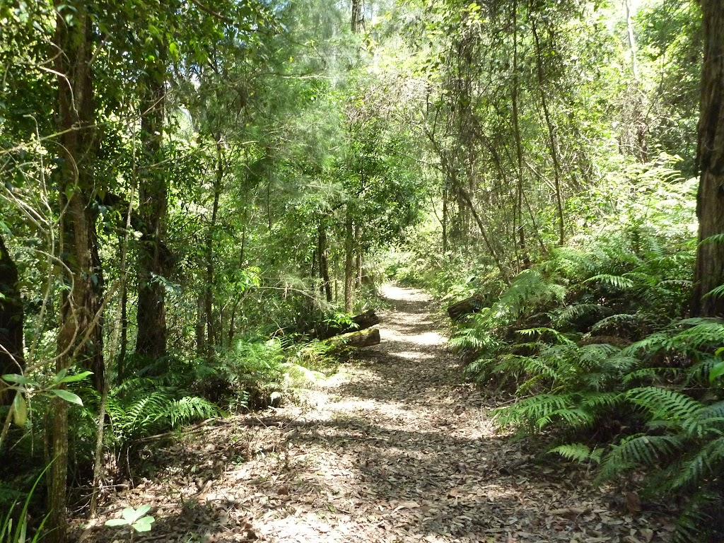 The wide track south of the Mooney Mooney Creek crossing