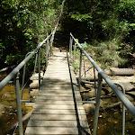 Crossing a small tidal creek north of Mooney Mooney Creek campsite (373315)