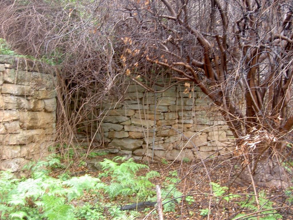 McGaw's Ruins