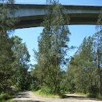 Heading under the F3 Mooney Mooney bridge (373654)