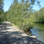 Walking alongside Mooney Mooney Creek (373747)