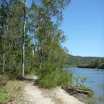 Walking alongside Mooney Mooney Creek (373921)