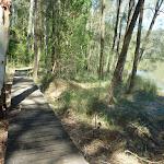 Boardwalk beside Piles Creek (374083)