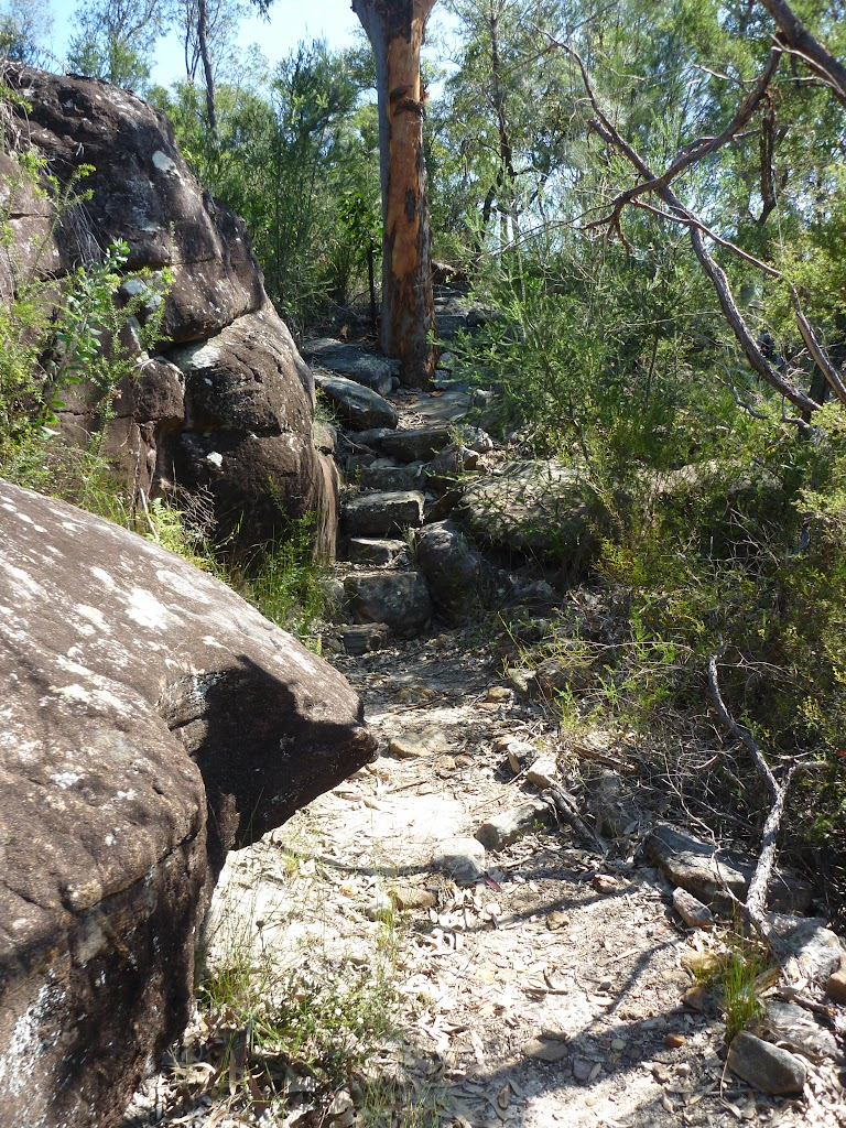 Rock steps south of Int of Patonga Ferry and Girrakool tracks