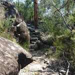 Rock steps south of Int of Patonga Ferry and Girrakool tracks (374482)