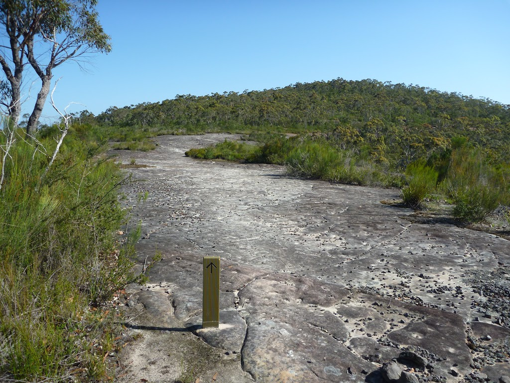 GNW arrow posts showing the way on the rock platforms in Brisbane Waters NP
