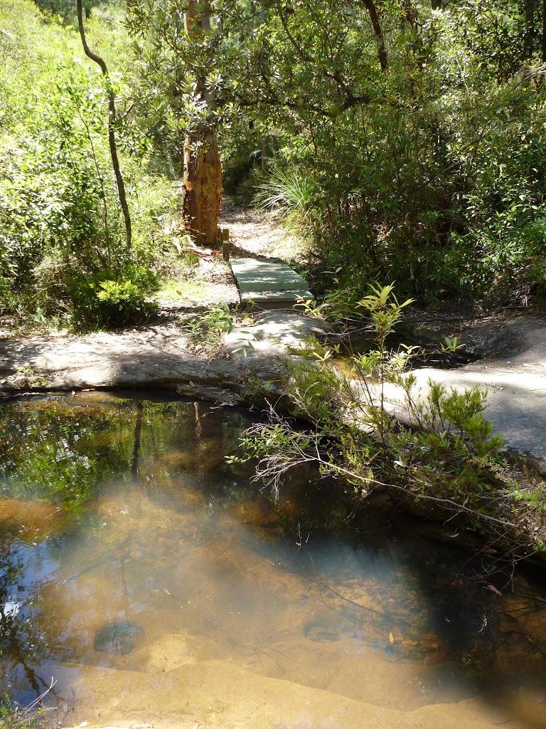 Crossing Lyrebird Gully Creek