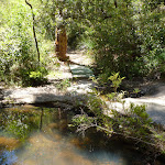 Crossing Lyrebird Gully Creek (376625)