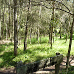 Calna Creek Campsite (south) (377630)