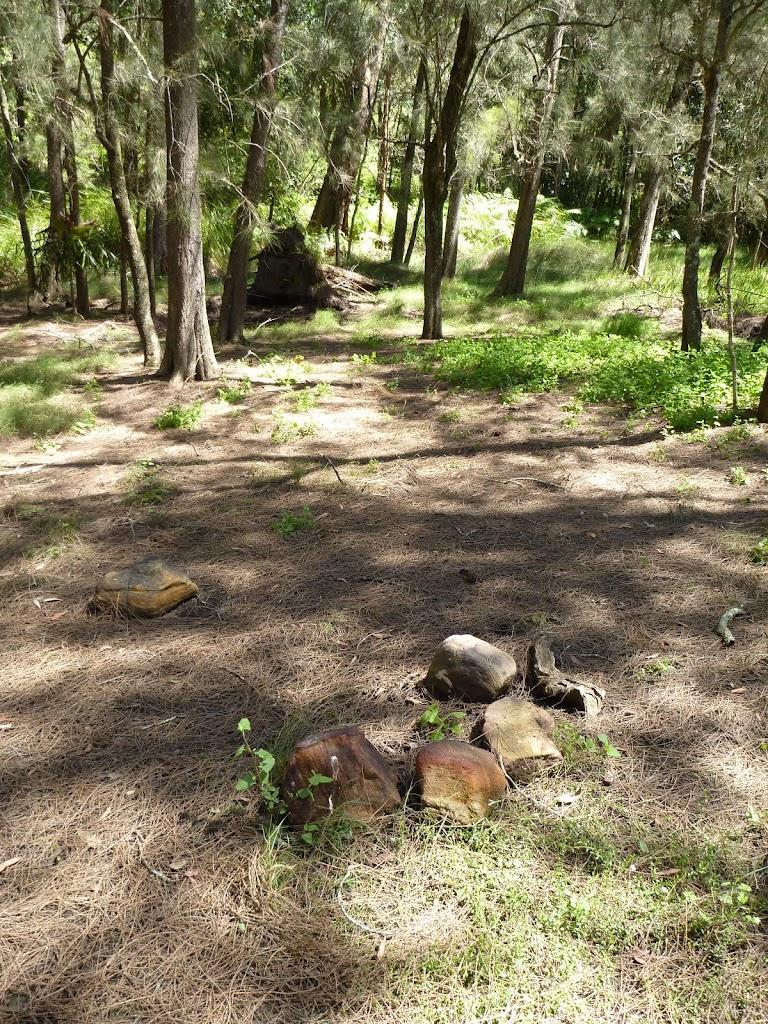 Calna Creek Campsite (south)
