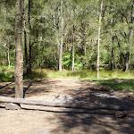 Calna Creek Northern campsite (377780)