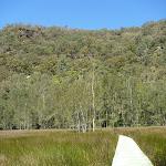 Crossing the saltmarsh Near Calna Creek (377873)