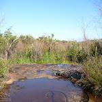 Creek near Van Dahls campsite (378905)