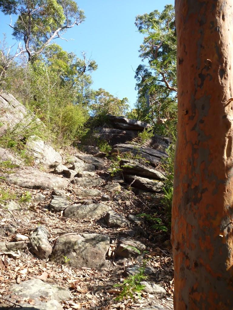 Steep rock track beside Woy WOy Landfill