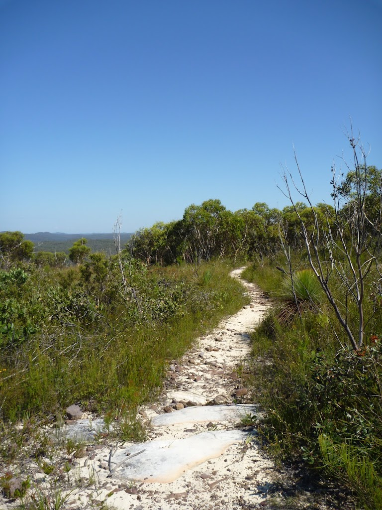 The track leading along the wester side of Mt Wondabyne