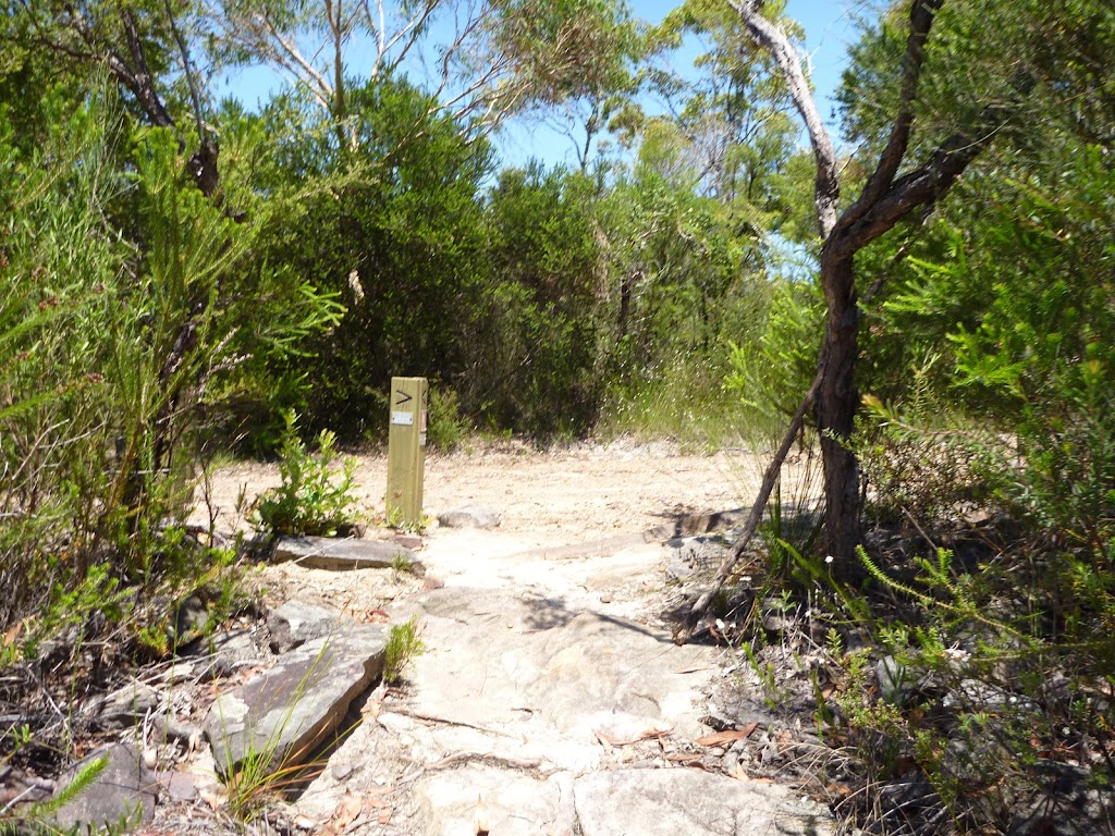 Int of GNW and Wondabyne trail